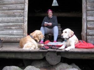 dog daycare urban hound boston hiking
