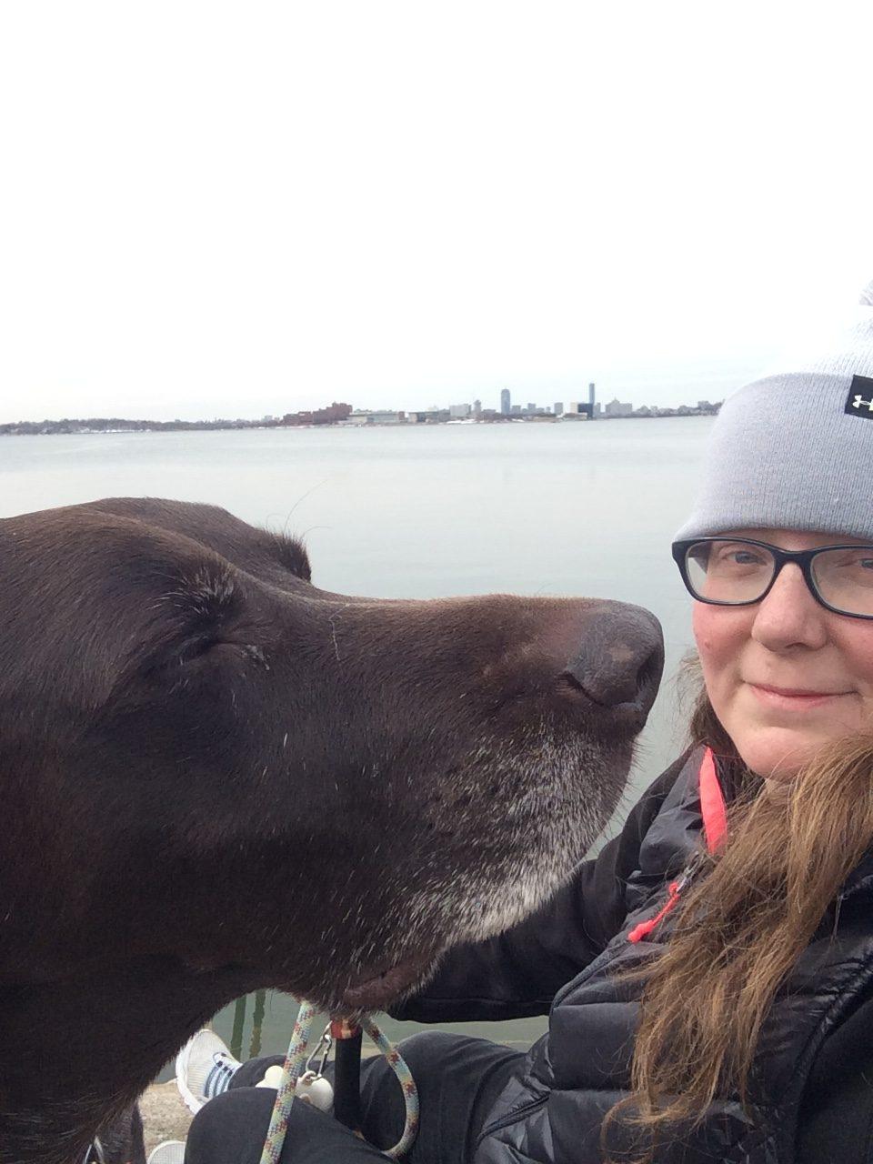 the urban hound boston dog daycare